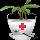 گیاهان دارویی و طب سنتی