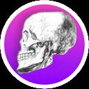 آناتومی استخوان