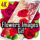 Flower Images Gif, Flowers Live Wallpapers 4K