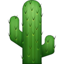 Cafe Cactus