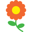 انواع گل و نگهداری