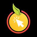 آنلاین میوه