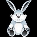 نگهداری خرگوش