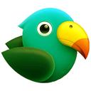آموزش تربیت طوطی سخنگو
